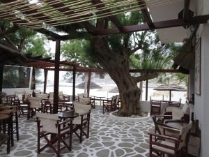 32 Sifnos - gepflege Tavernen