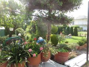 49 Orei  Garten