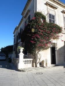 042 ein einzelner Baum ist Schmuck an der Fasade