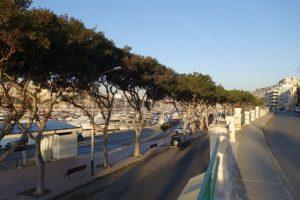 16 Flair entlang der Marina