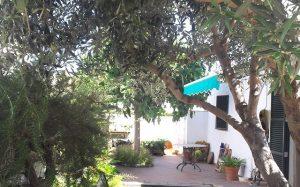 062 idyllischer Innenhof