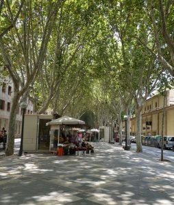 106 La Rambla - Blumenplatz