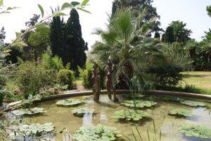 154 Park Jardines de Real