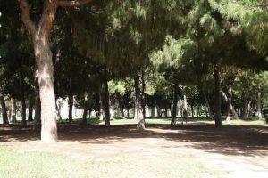 39 Abwechslungsreiches Erholungsgebiet Turia