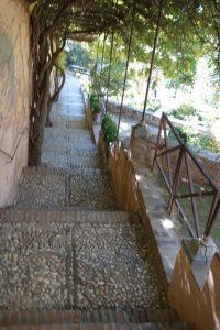 29 Trepp rauf Trepp runter