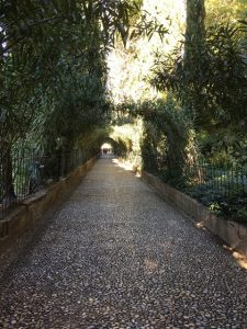 31 Weg des Orleanders
