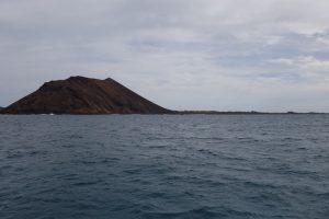 0001 Insel Lobos